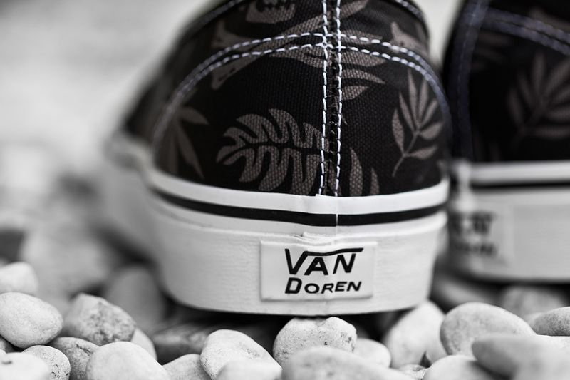 Vans_classics_2014_spring_van_doren_series_authentic_pack_6